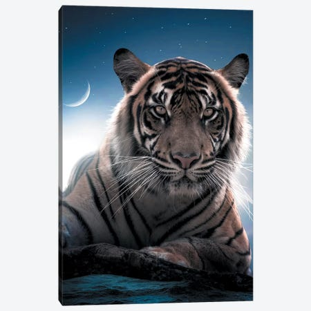 Tiger Moon Canvas Print #ZGA50} by Zenja Gammer Canvas Art Print