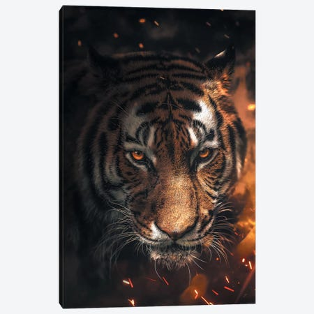 Tiger Sparkles Canvas Print #ZGA51} by Zenja Gammer Canvas Art Print