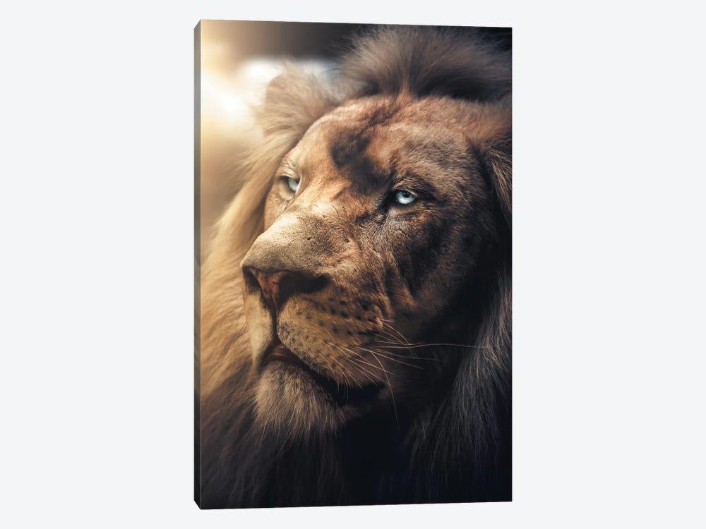 Lion Boss by Zenja Gammer 1-piece Canvas Print