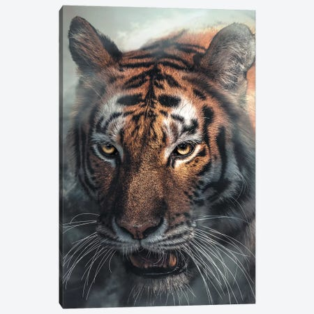 Tiger Canvas Print #ZGA61} by Zenja Gammer Canvas Wall Art
