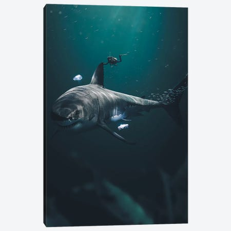 The Megalodon Canvas Print #ZGA62} by Zenja Gammer Canvas Art