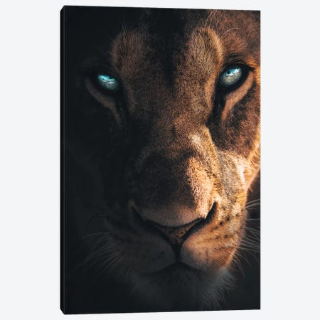 The Mysterious Creature Canvas Print #ZGA67} by Zenja Gammer Canvas Print