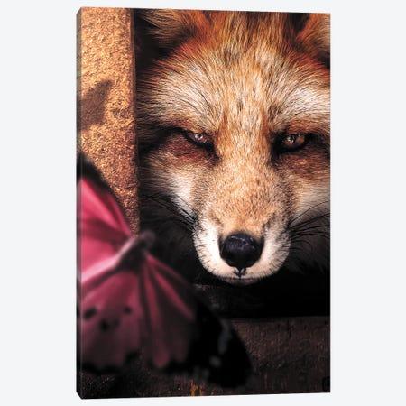 The Hiding Fox & Butterfly Canvas Print #ZGA70} by Zenja Gammer Canvas Art Print