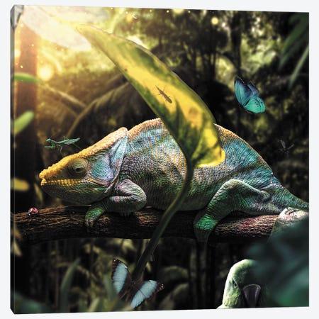 Jungle Party Canvas Print #ZGA71} by Zenja Gammer Art Print
