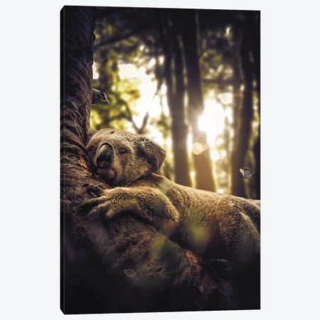Sleeping Koala Canvas Print #ZGA72} by Zenja Gammer Art Print