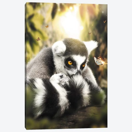 The Lemur & Burning Butterfly Canvas Print #ZGA73} by Zenja Gammer Canvas Art Print