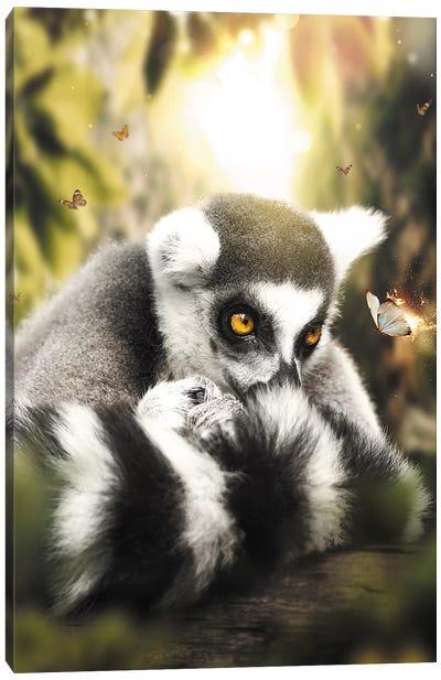 The Lemur & Burning Butterfly Canvas Art Print