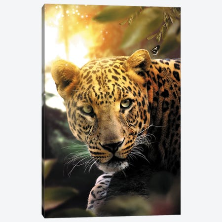 The Leopard & Butterfly Canvas Print #ZGA74} by Zenja Gammer Canvas Art