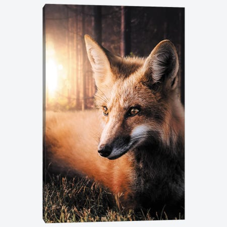The Fox In The Forest Canvas Print #ZGA76} by Zenja Gammer Canvas Art