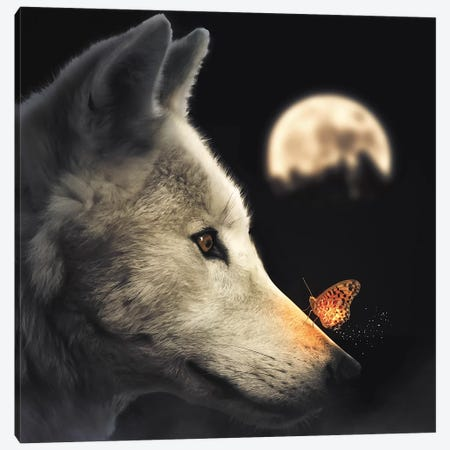 The Wolf & Glowing Butterfly Canvas Print #ZGA79} by Zenja Gammer Art Print