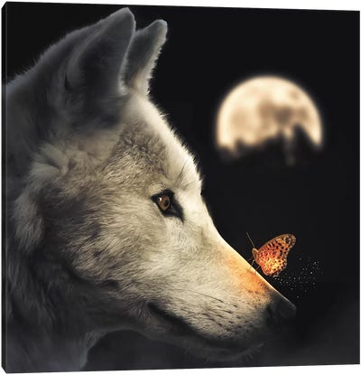 The Wolf & Glowing Butterfly Canvas Art Print