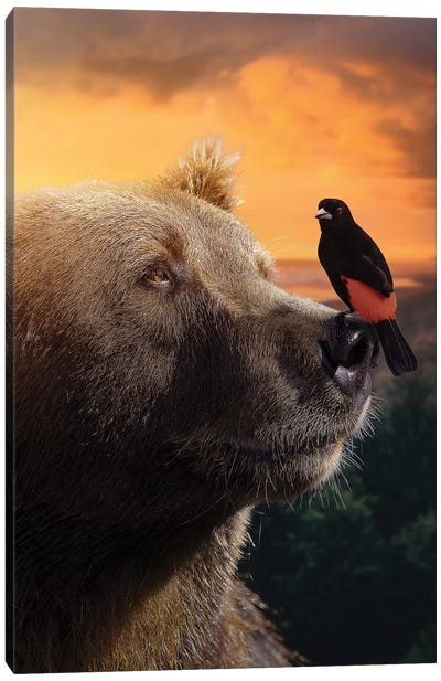 The Bear & Bird Canvas Art Print