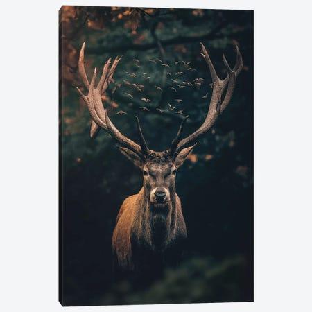 The Moody Deer Canvas Print #ZGA90} by Zenja Gammer Canvas Art Print