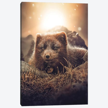 The Brown Fox Canvas Print #ZGA93} by Zenja Gammer Canvas Print