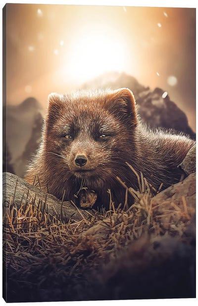 The Brown Fox Canvas Art Print
