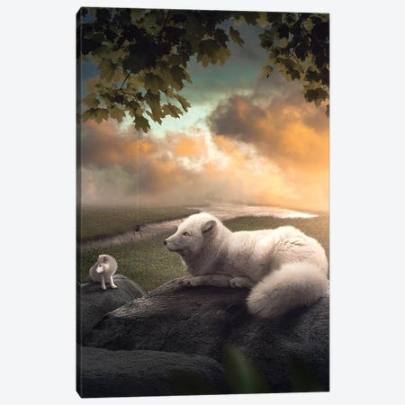The Arctic Foxes Canvas Print #ZGA94} by Zenja Gammer Canvas Artwork