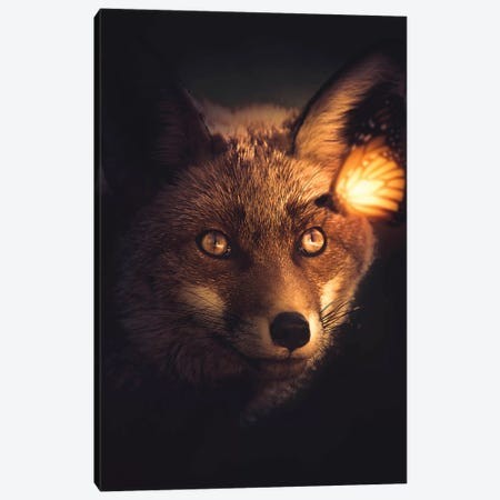 The Fox And Glowing Butterfly Canvas Print #ZGA95} by Zenja Gammer Canvas Artwork