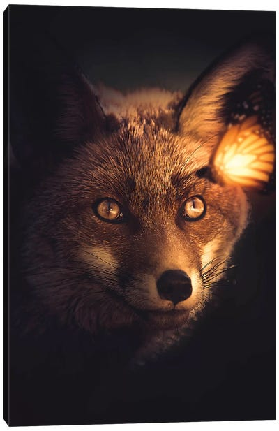 The Fox And Glowing Butterfly Canvas Art Print