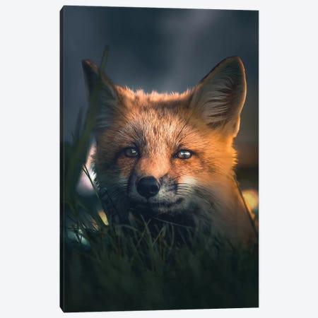 The Fox At Night Canvas Print #ZGA99} by Zenja Gammer Canvas Print