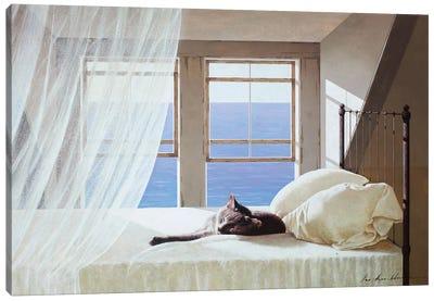 Nap Time Canvas Art Print