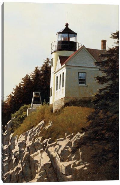 Cliff Canvas Art Print