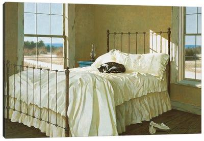 Lazy Afternoon Canvas Art Print