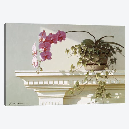 Orchid On Mantle Canvas Print #ZHL74} by Zhen-Huan Lu Art Print