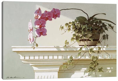 Orchid On Mantle Canvas Art Print
