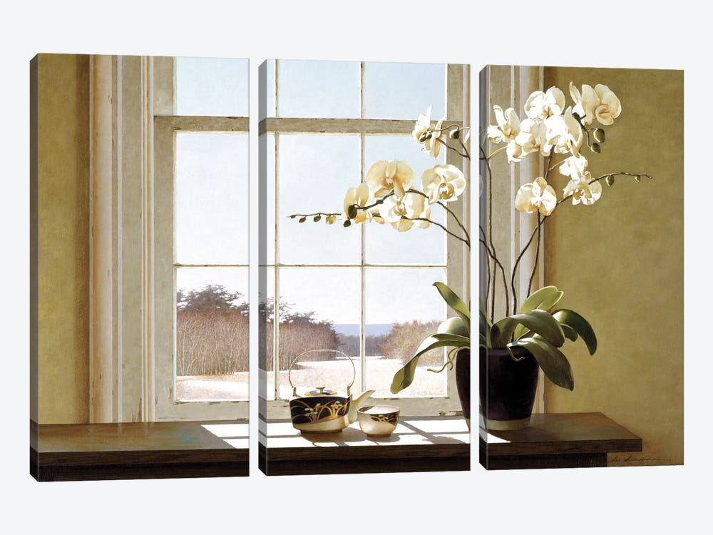 Orchids In The Window II 3-piece Canvas Artwork