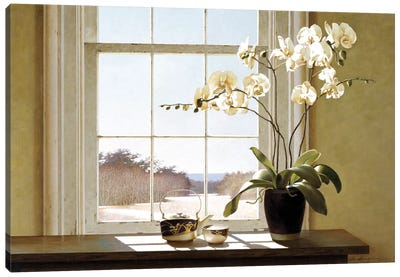 Orchids In The Window II Canvas Art Print
