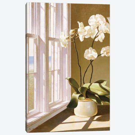 Pot Of Orchids Canvas Print #ZHL93} by Zhen-Huan Lu Canvas Artwork