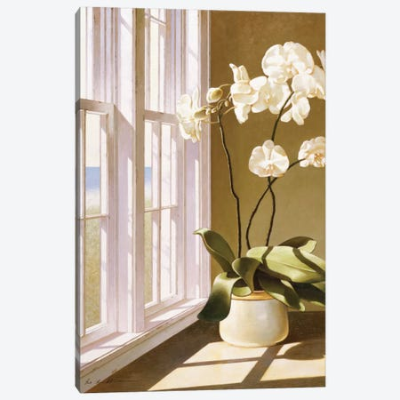 Pot Of Orchids Canvas Print #ZHL93} by Zhen-Huan Lu Canvas Artwork