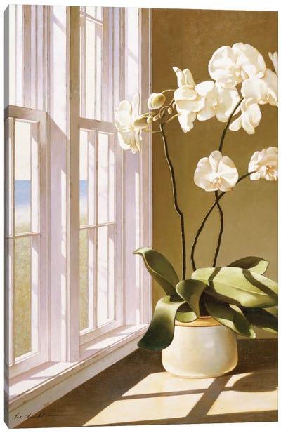 Pot Of Orchids Canvas Art Print