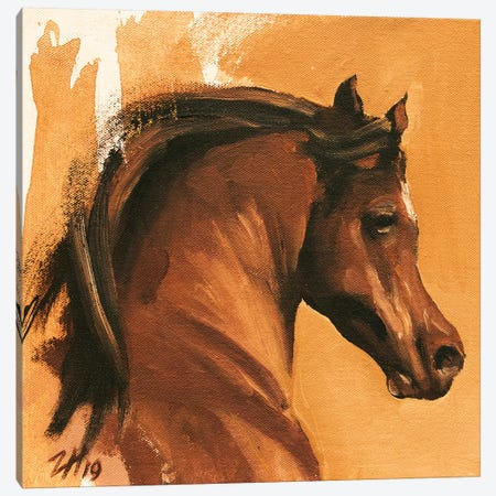 Equine Head Arab Chestnut Canvas Print #ZHO105} by Zil Hoque Canvas Print
