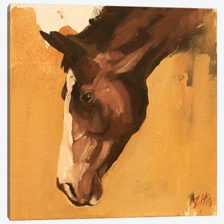 Family Equine Canvas Print #ZHO106} by Zil Hoque Art Print