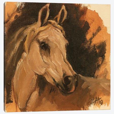 Equine Head Arab White Canvas Print #ZHO107} by Zil Hoque Canvas Art Print