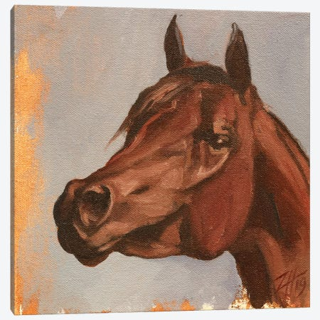 Equine Head Arab Chestnut Canvas Print #ZHO108} by Zil Hoque Canvas Art