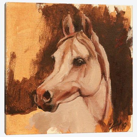 Equine Head Arab White Canvas Print #ZHO109} by Zil Hoque Canvas Art