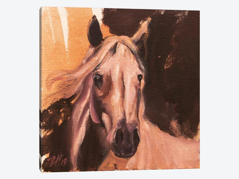 Equine Head Arab White (Study 3) 2019 by Zil Hoque 1-piece Canvas Artwork
