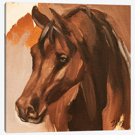 Equine Head Arab Chestnut (study 14) 2019 Canvas Print #ZHO112} by Zil Hoque Art Print
