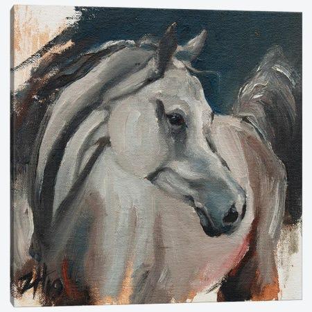 Equine Head Arab White (study 1) Canvas Print #ZHO120} by Zil Hoque Canvas Art