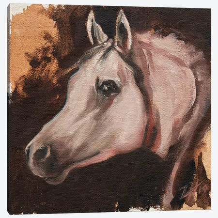equine Head Arab White (study 11) Canvas Print #ZHO121} by Zil Hoque Canvas Wall Art