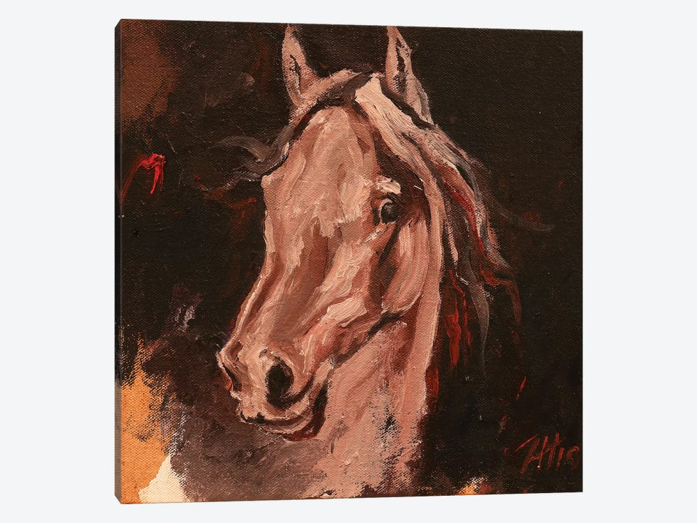 Equine Head Arab White (study 19) by Zil Hoque 1-piece Canvas Art