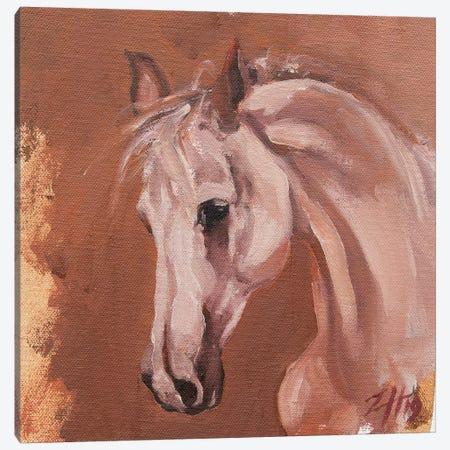 Equine Head Arab White (study 27) Canvas Print #ZHO123} by Zil Hoque Canvas Artwork