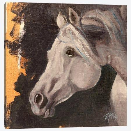 Equine Head Arab White (study 5) Canvas Print #ZHO128} by Zil Hoque Canvas Wall Art
