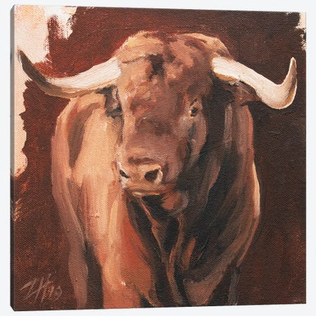 Toro Head Colorado (study 7) Canvas Print #ZHO146} by Zil Hoque Canvas Print