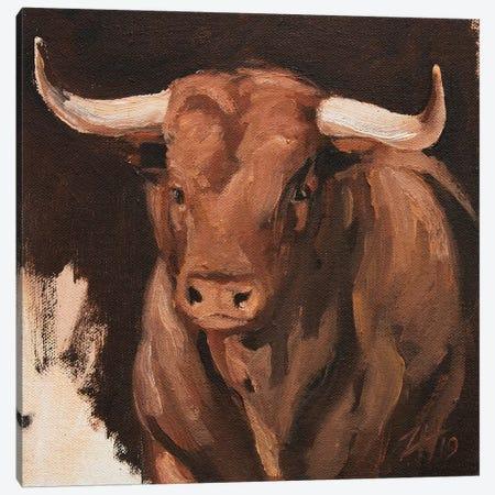 Toro Head Colorado (study 8) Canvas Print #ZHO147} by Zil Hoque Canvas Print