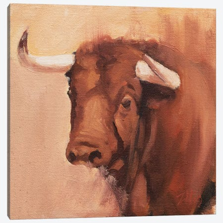 Toro Head Colorado (study 9) Canvas Print #ZHO148} by Zil Hoque Canvas Art
