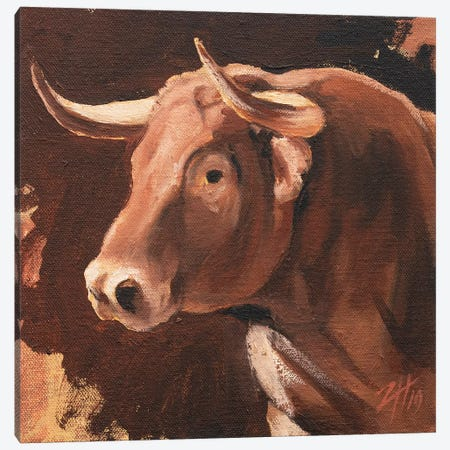 Toro Head Colorado (study 11) Canvas Print #ZHO150} by Zil Hoque Art Print