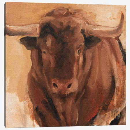 Toro Head Colorado (study 14) Canvas Print #ZHO153} by Zil Hoque Canvas Print